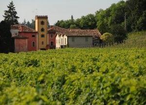 Villa Clementina Veneto